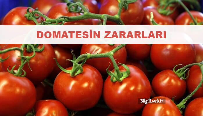 domatesin zararları