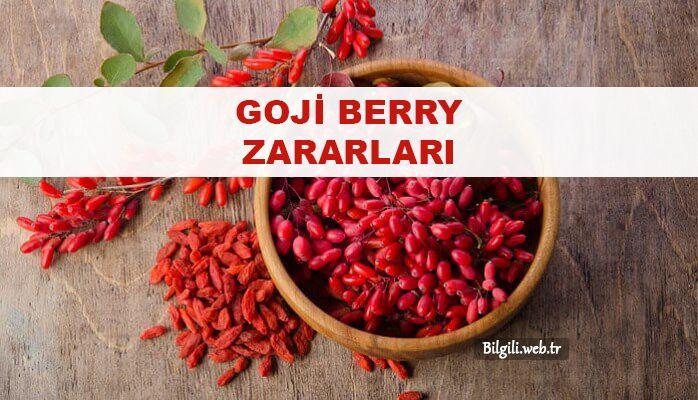 goji berry zararları